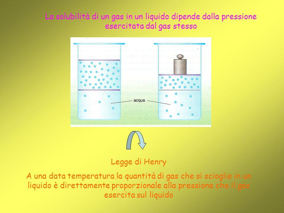 La solubilità di un gas in un liquido dipende dalla pressione esercitata dal gas stesso