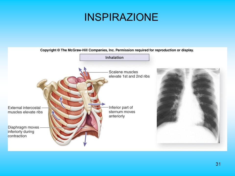 INSPIRAZIONE