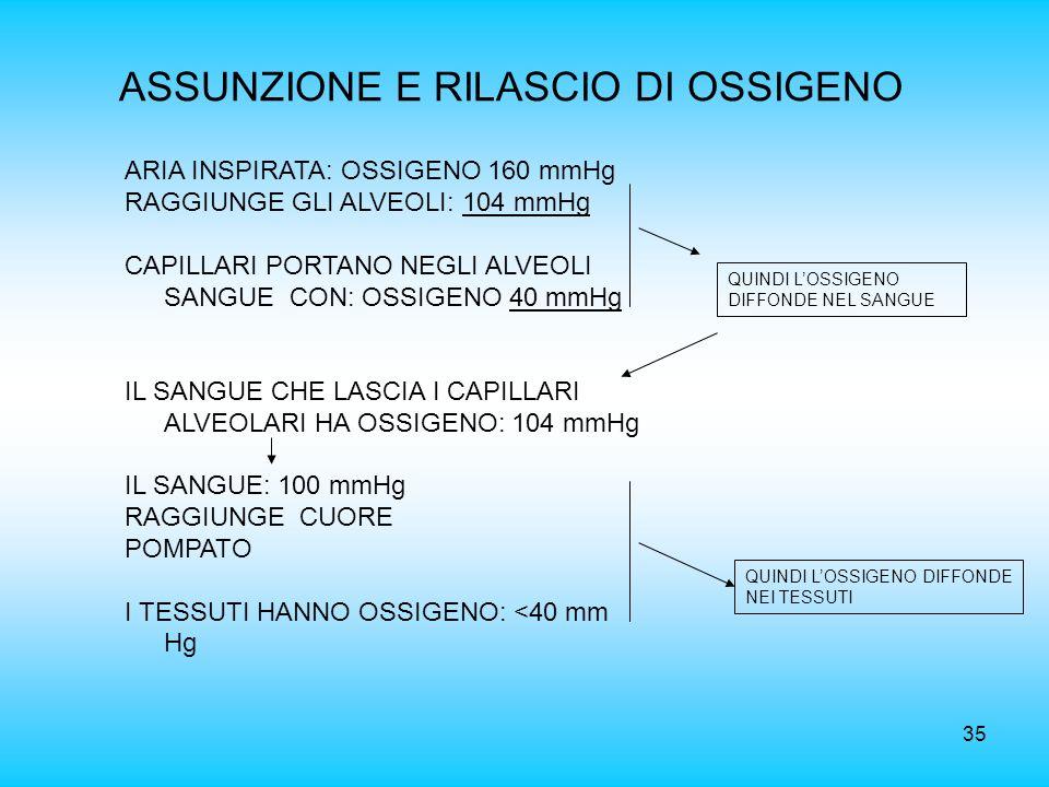 ASSUNZIONE E RILASCIO DI OSSIGENO