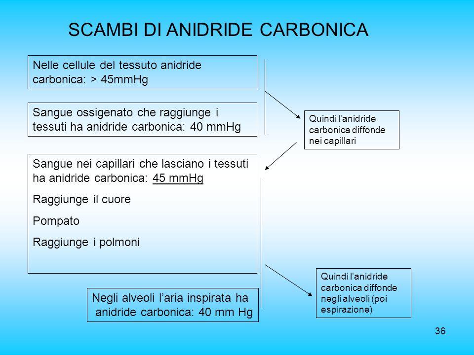 SCAMBI DI ANIDRIDE CARBONICA