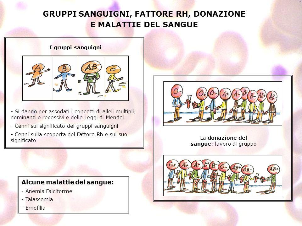 GRUPPI SANGUIGNI, FATTORE RH, DONAZIONE