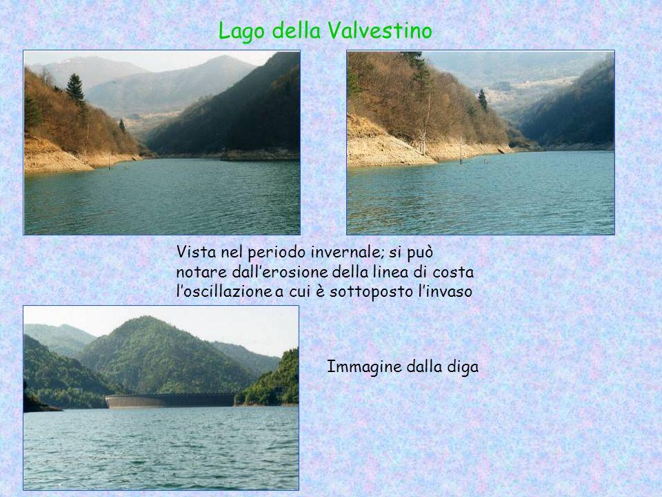 Lago della Valvestino Vista nel periodo invernale; si può notare dall'erosione della linea di costa l'oscillazione a cui è sottoposto l'invaso.