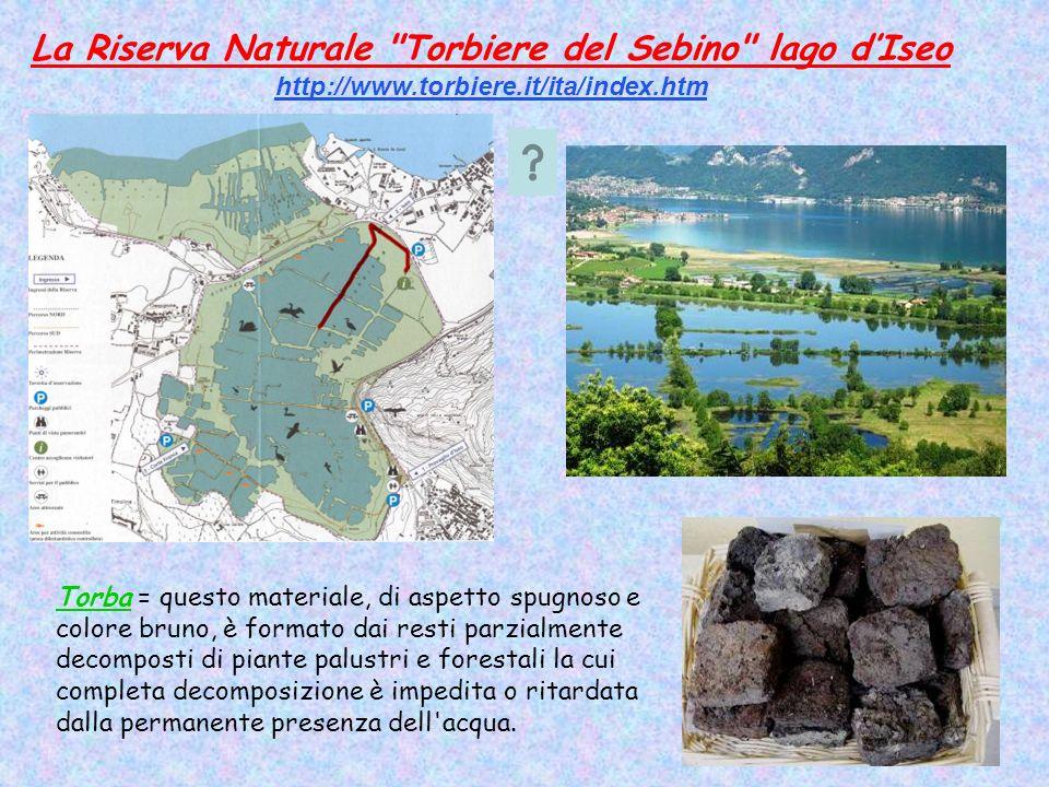 La Riserva Naturale Torbiere del Sebino lago d'Iseo