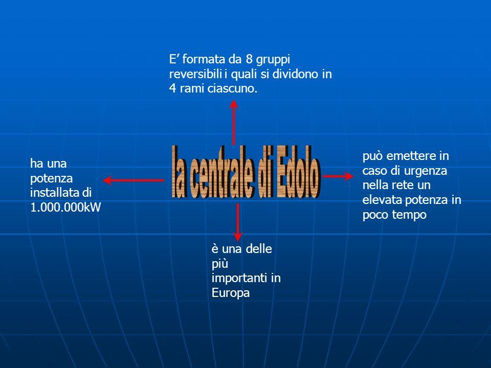 E' formata da 8 gruppi reversibili i quali si dividono in 4 rami ciascuno.