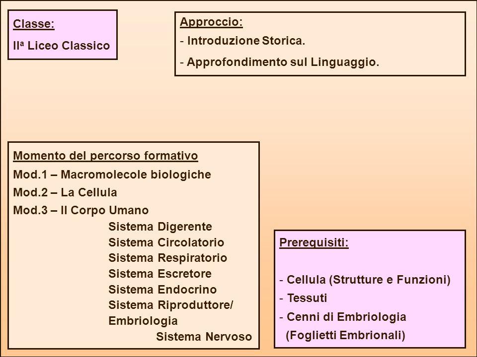 Classe: IIa Liceo Classico. Approccio: Introduzione Storica. Approfondimento sul Linguaggio. Momento del percorso formativo.