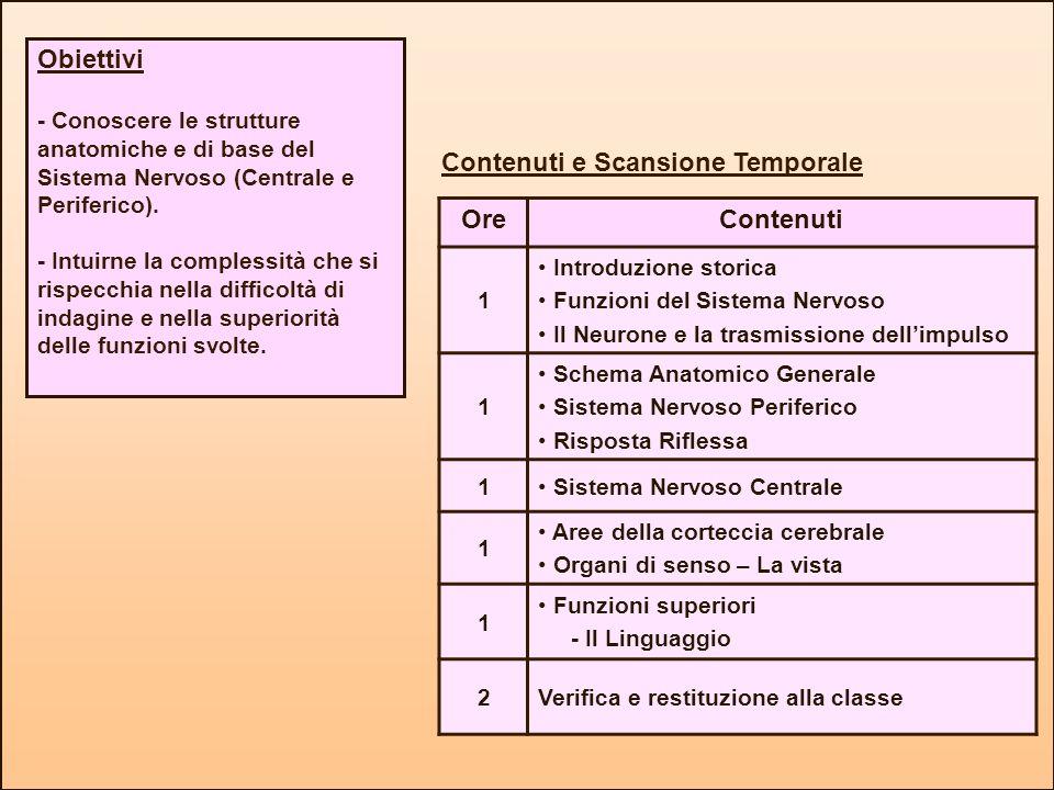 Contenuti e Scansione Temporale Ore Contenuti