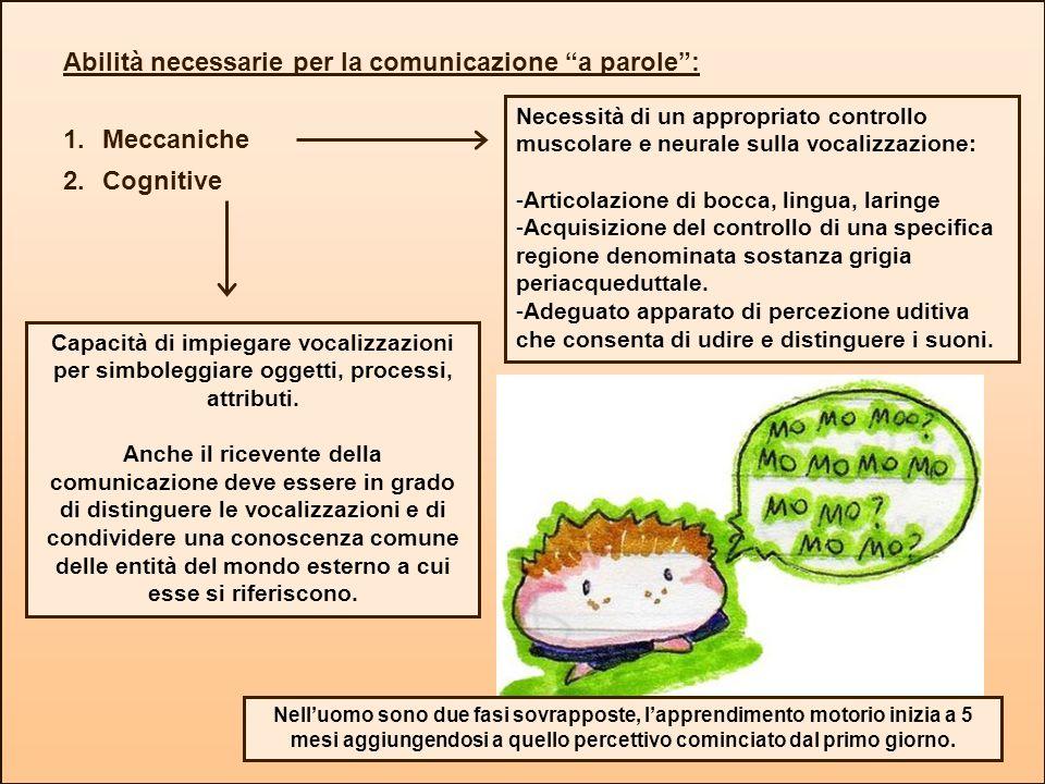 Abilità necessarie per la comunicazione a parole : Meccaniche