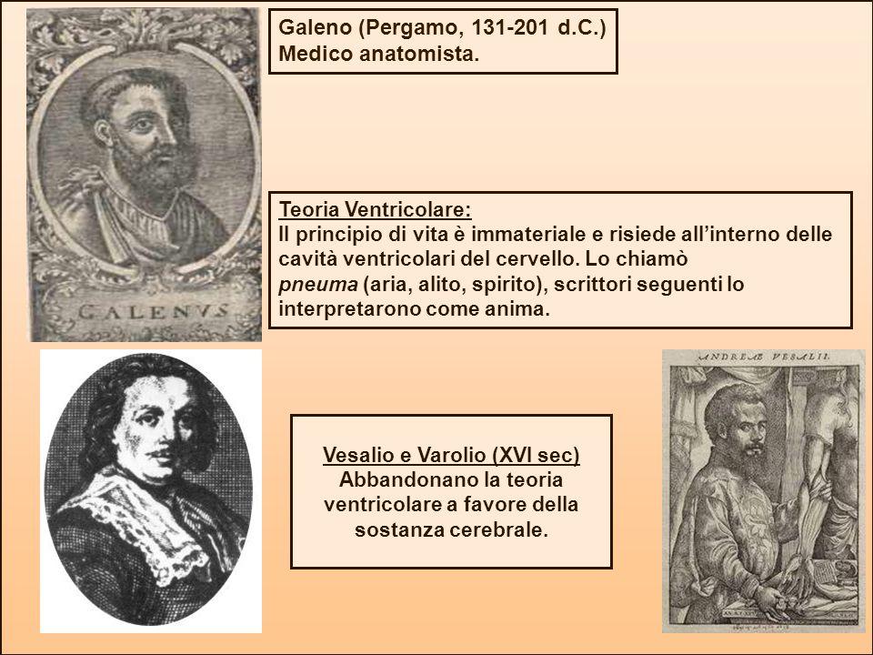 Galeno (Pergamo, 131-201 d.C.) Medico anatomista. Teoria Ventricolare: