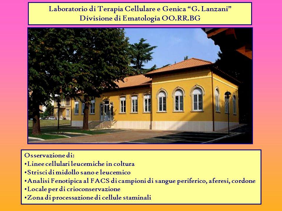 Laboratorio di Terapia Cellulare e Genica G. Lanzani
