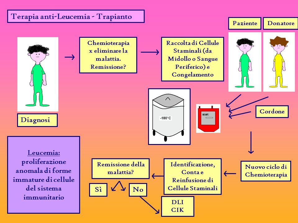 Terapia anti-Leucemia - Trapianto