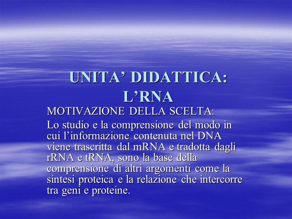 UNITA' DIDATTICA: L'RNA