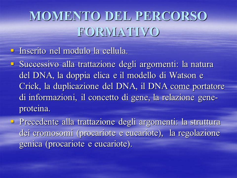 MOMENTO DEL PERCORSO FORMATIVO
