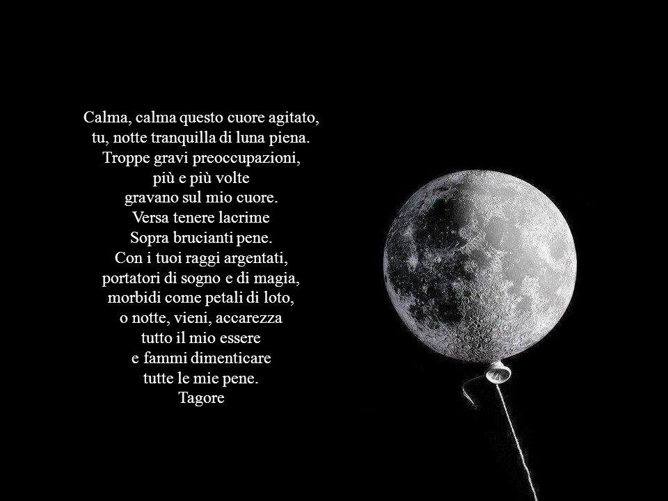 Calma, calma questo cuore agitato, tu, notte tranquilla di luna piena