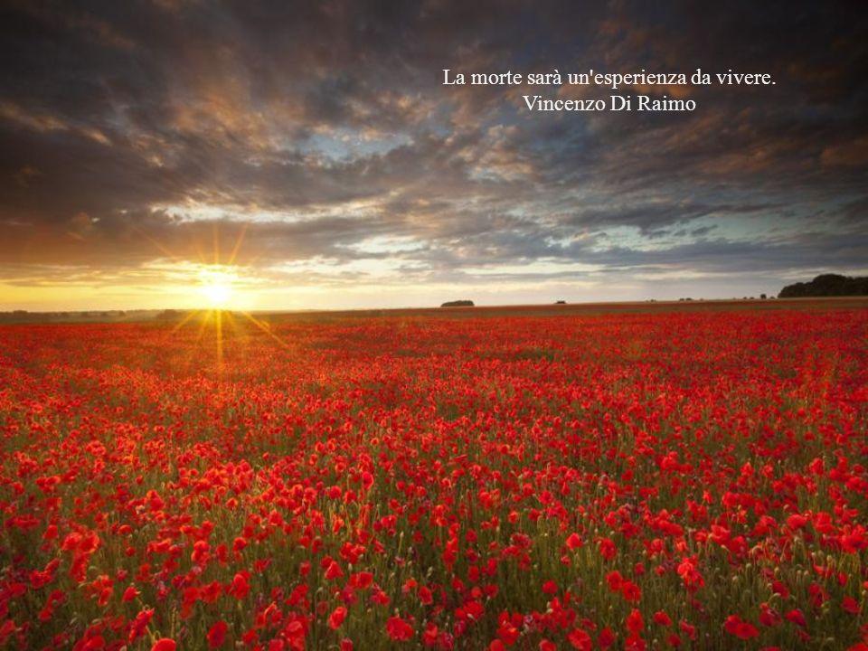 La morte sarà un esperienza da vivere. Vincenzo Di Raimo