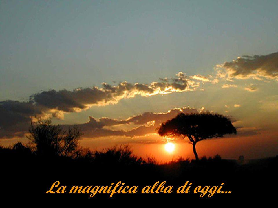 La magnifica alba di oggi...
