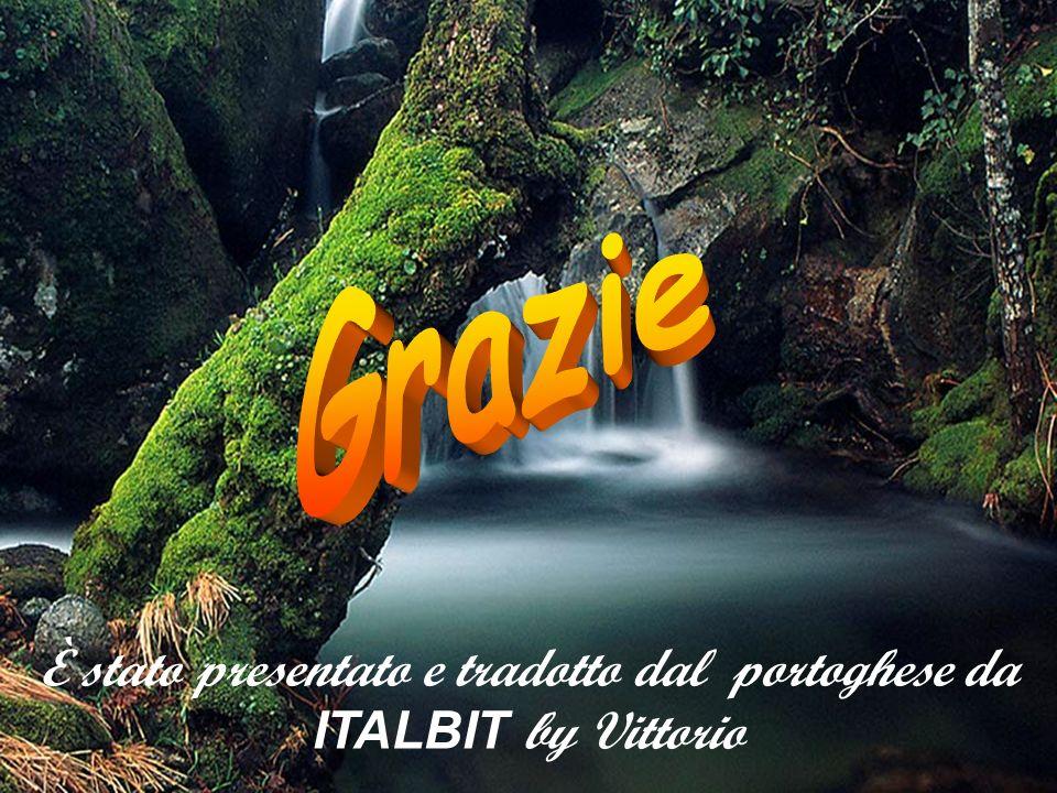 È stato presentato e tradotto dal portoghese da ITALBIT by Vittorio