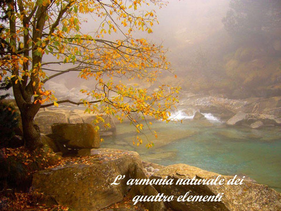 L' armonia naturale dei quattro elementi