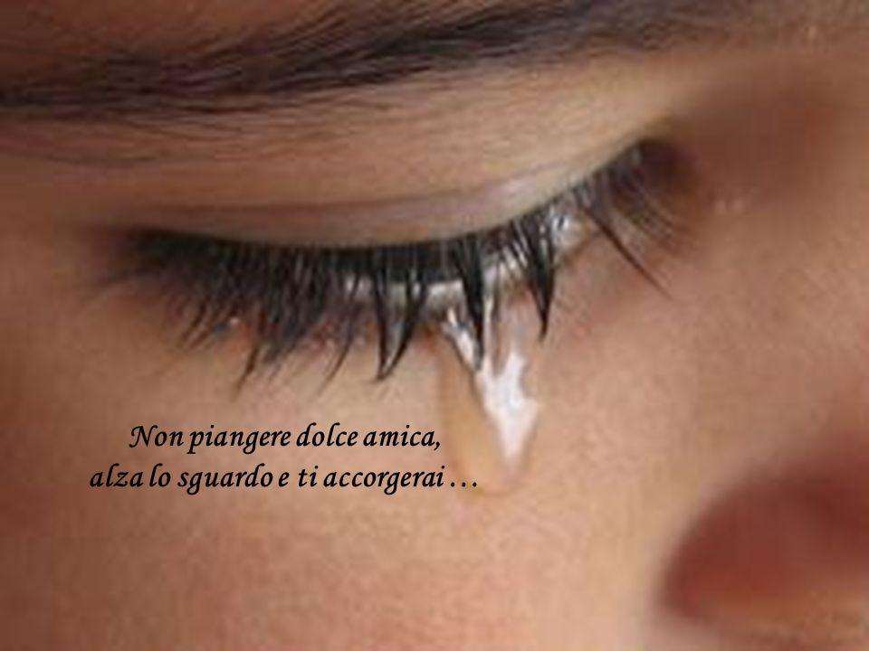 Non piangere dolce amica, alza lo sguardo e ti accorgerai …