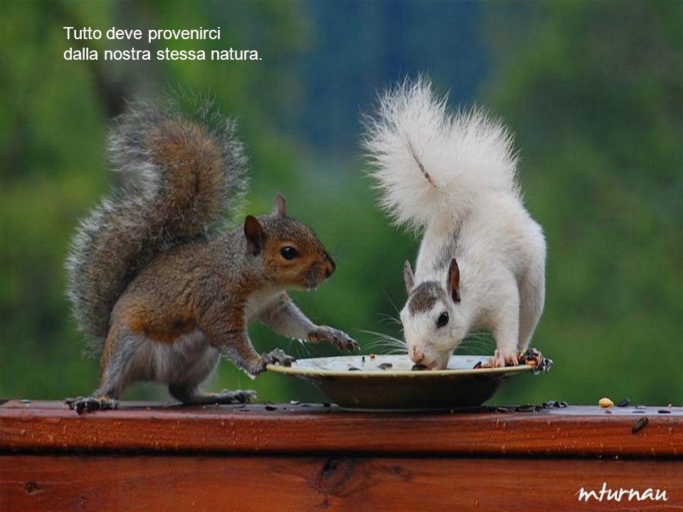 Tutto deve provenirci dalla nostra stessa natura.