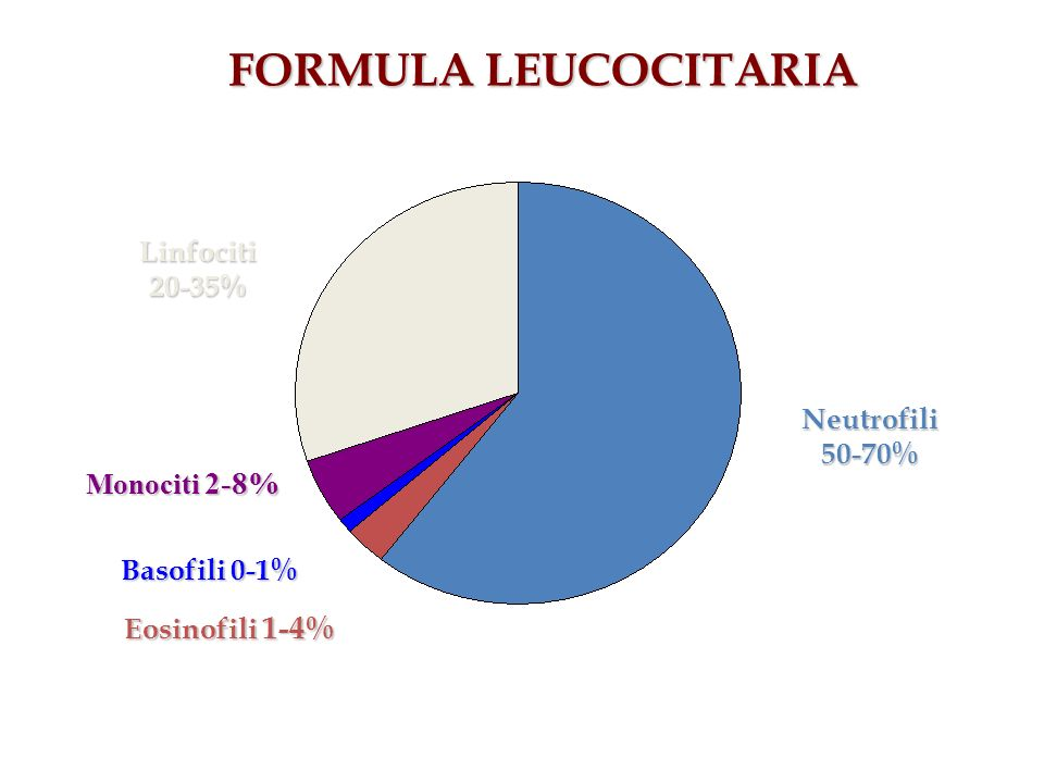 FORMULA LEUCOCITARIA Linfociti 20-35% Neutrofili 50-70% Monociti 2-8%