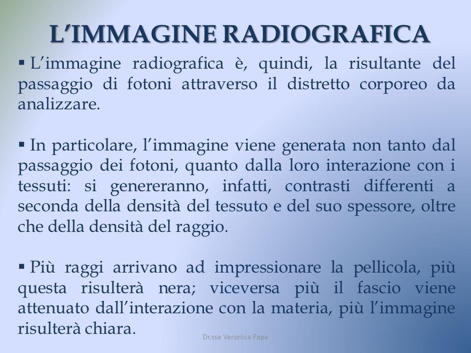 L'IMMAGINE RADIOGRAFICA