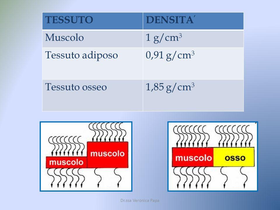 TESSUTO DENSITA' Muscolo 1 g/cm3 Tessuto adiposo 0,91 g/cm3