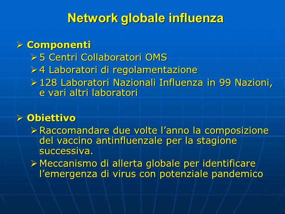 Network globale influenza