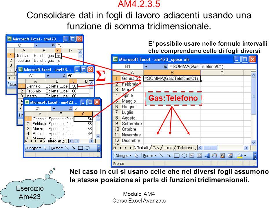 Modulo AM4 Corso Excel Avanzato