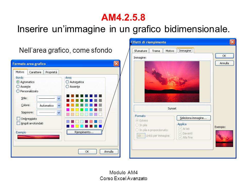 AM4.2.5.8 Inserire un'immagine in un grafico bidimensionale.