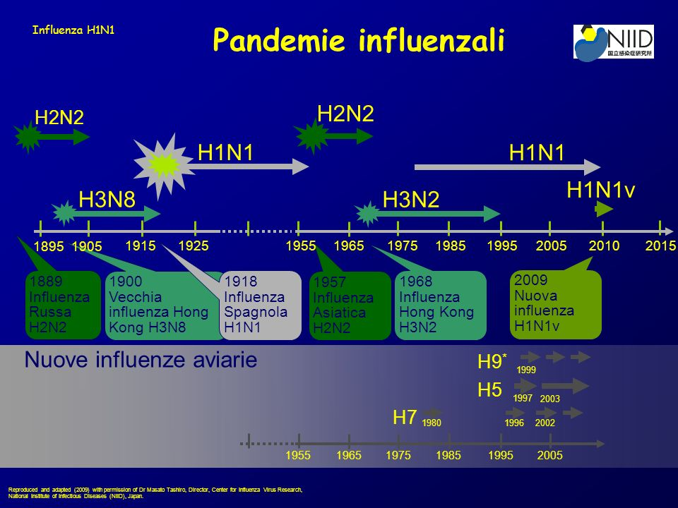 Pandemie influenzali H2N2 H1N1 H1N1 H1N1v H3N8 H3N2