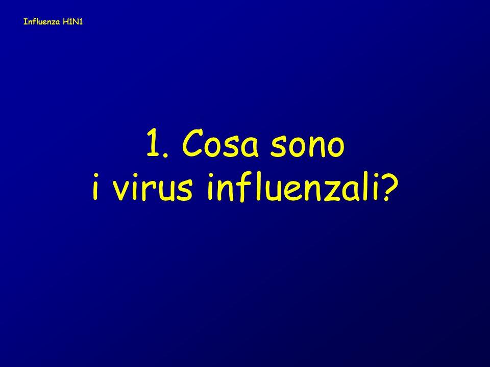 Influenza H1N1 1. Cosa sono i virus influenzali