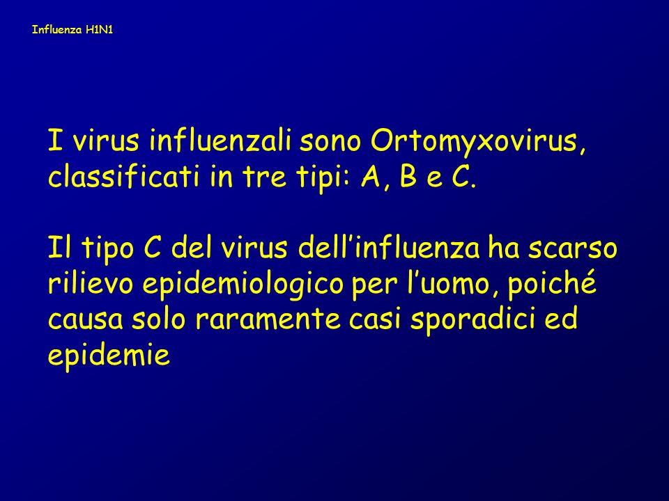 I virus influenzali sono Ortomyxovirus,