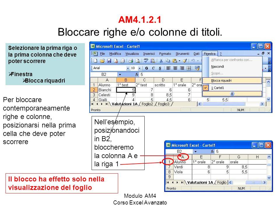 AM4.1.2.1 Bloccare righe e/o colonne di titoli.