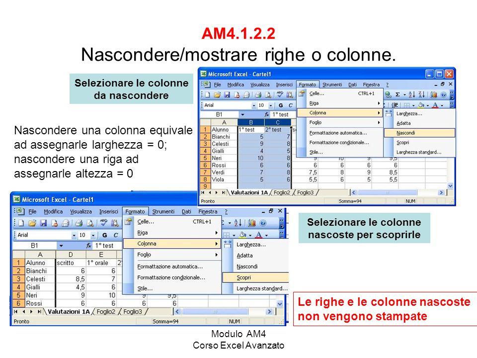 AM4.1.2.2 Nascondere/mostrare righe o colonne.