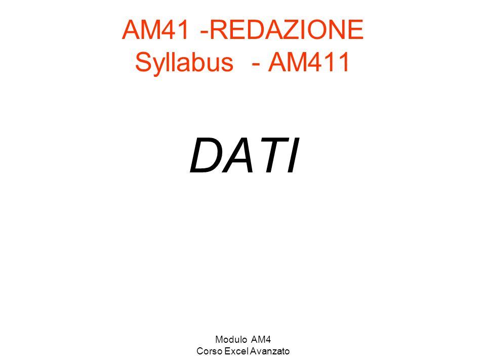 AM41 -REDAZIONE Syllabus - AM411