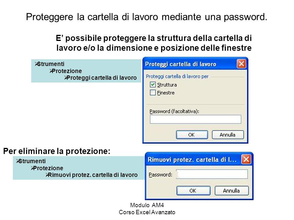 Proteggere la cartella di lavoro mediante una password.