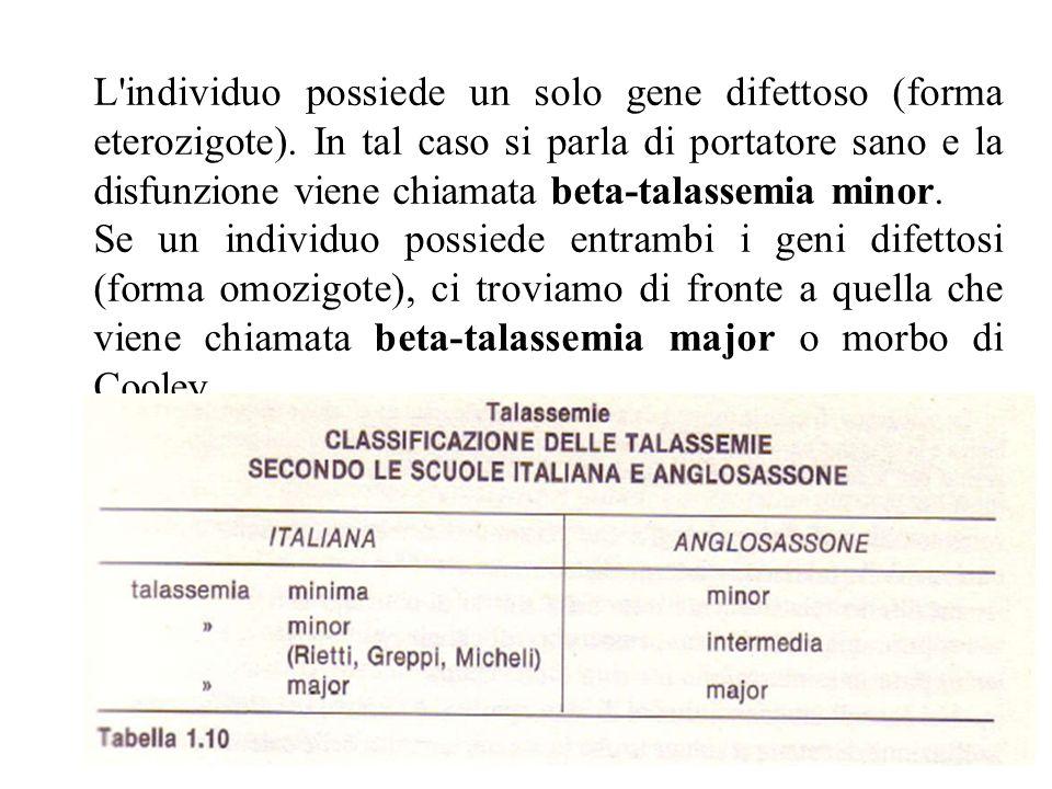 L individuo possiede un solo gene difettoso (forma eterozigote)