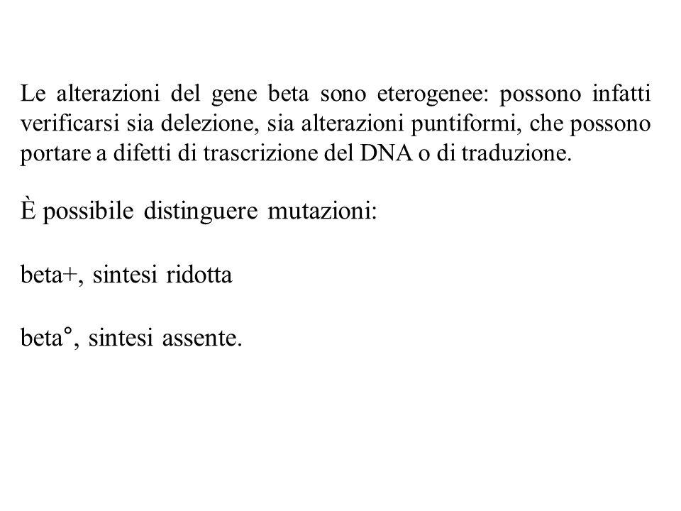 È possibile distinguere mutazioni: beta+, sintesi ridotta