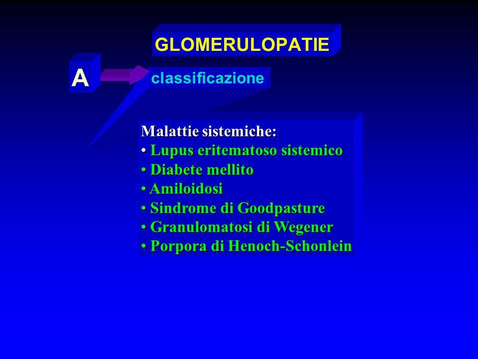 A GLOMERULOPATIE classificazione Malattie sistemiche:
