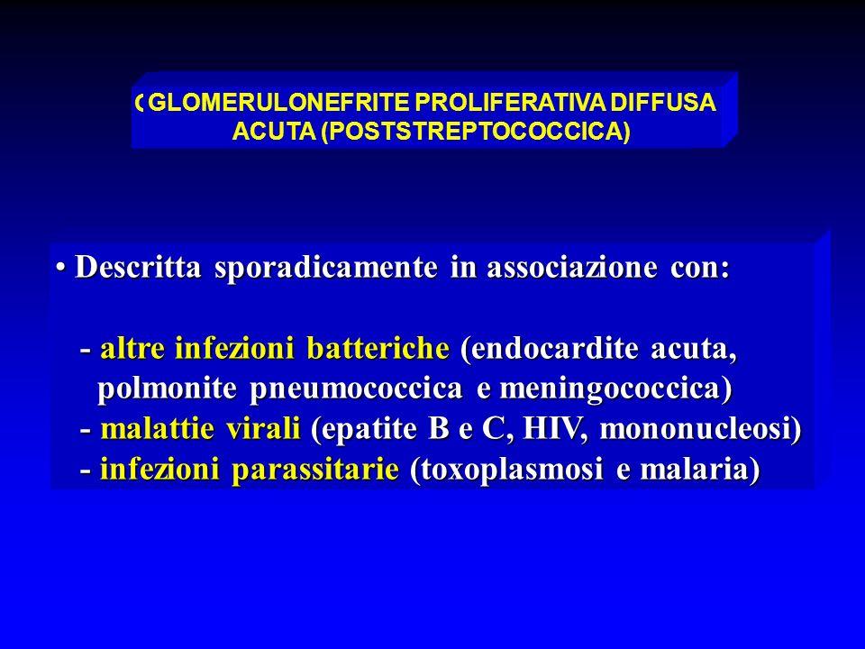 GLOMERULONEFRITE PROLIFERATIVA ACUTA DIFFUSA (NON-STREPTOCOCCICA)