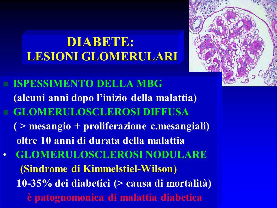 DIABETE: LESIONI GLOMERULARI