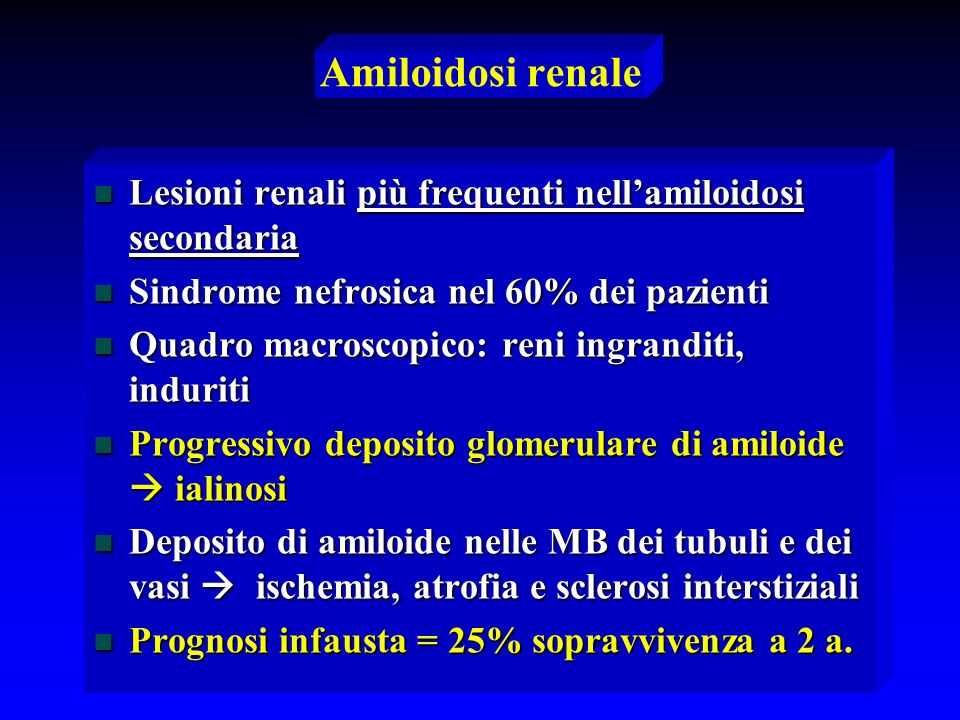 Amiloidosi renale Lesioni renali più frequenti nell'amiloidosi secondaria. Sindrome nefrosica nel 60% dei pazienti.