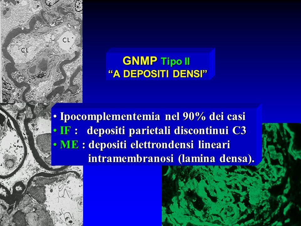 GNMP Tipo II A DEPOSITI DENSI