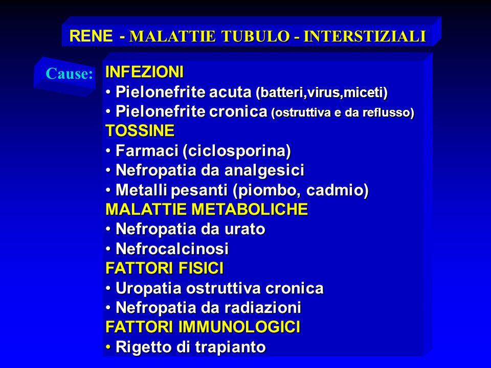 RENE - MALATTIE TUBULO - INTERSTIZIALI