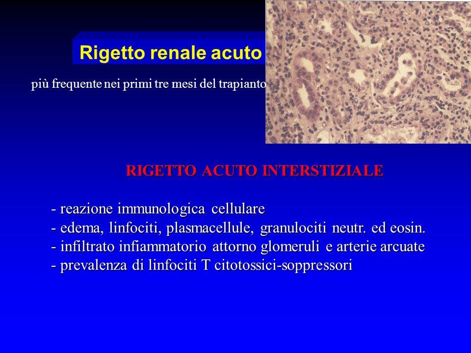 RIGETTO ACUTO INTERSTIZIALE - reazione immunologica cellulare