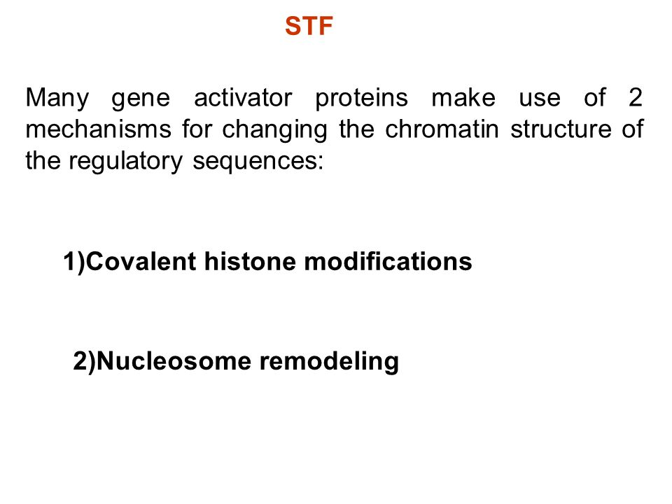 STFMany gene activator proteins make use of 2 mechanisms for changing the chromatin structure of the regulatory sequences: