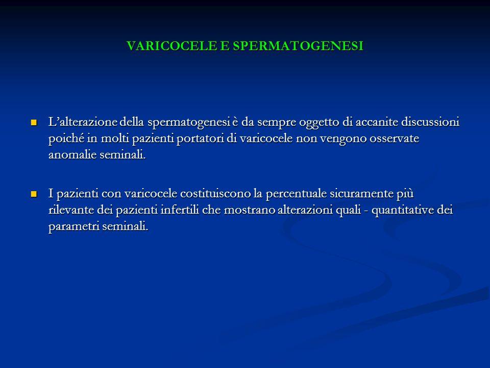 VARICOCELE E SPERMATOGENESI