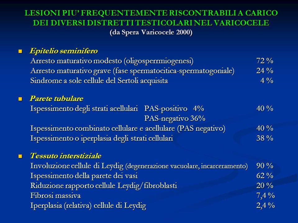 LESIONI PIU' FREQUENTEMENTE RISCONTRABILI A CARICO DEI DIVERSI DISTRETTI TESTICOLARI NEL VARICOCELE (da Spera Varicocele 2000)