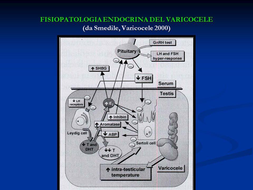 FISIOPATOLOGIA ENDOCRINA DEL VARICOCELE (da Smedile, Varicocele 2000)