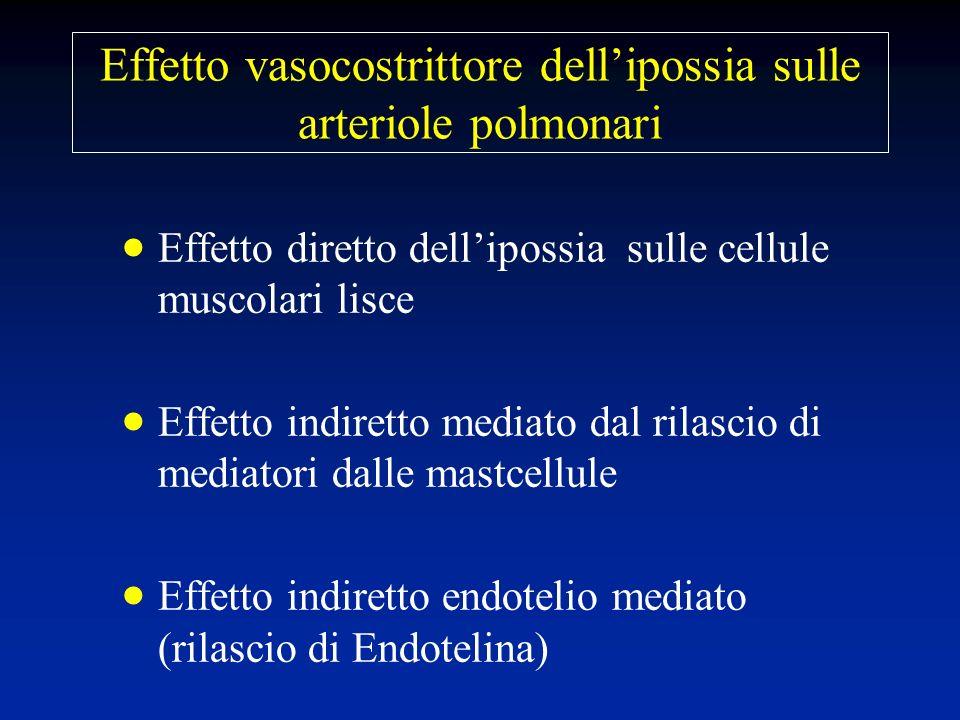 Effetto vasocostrittore dell'ipossia sulle arteriole polmonari